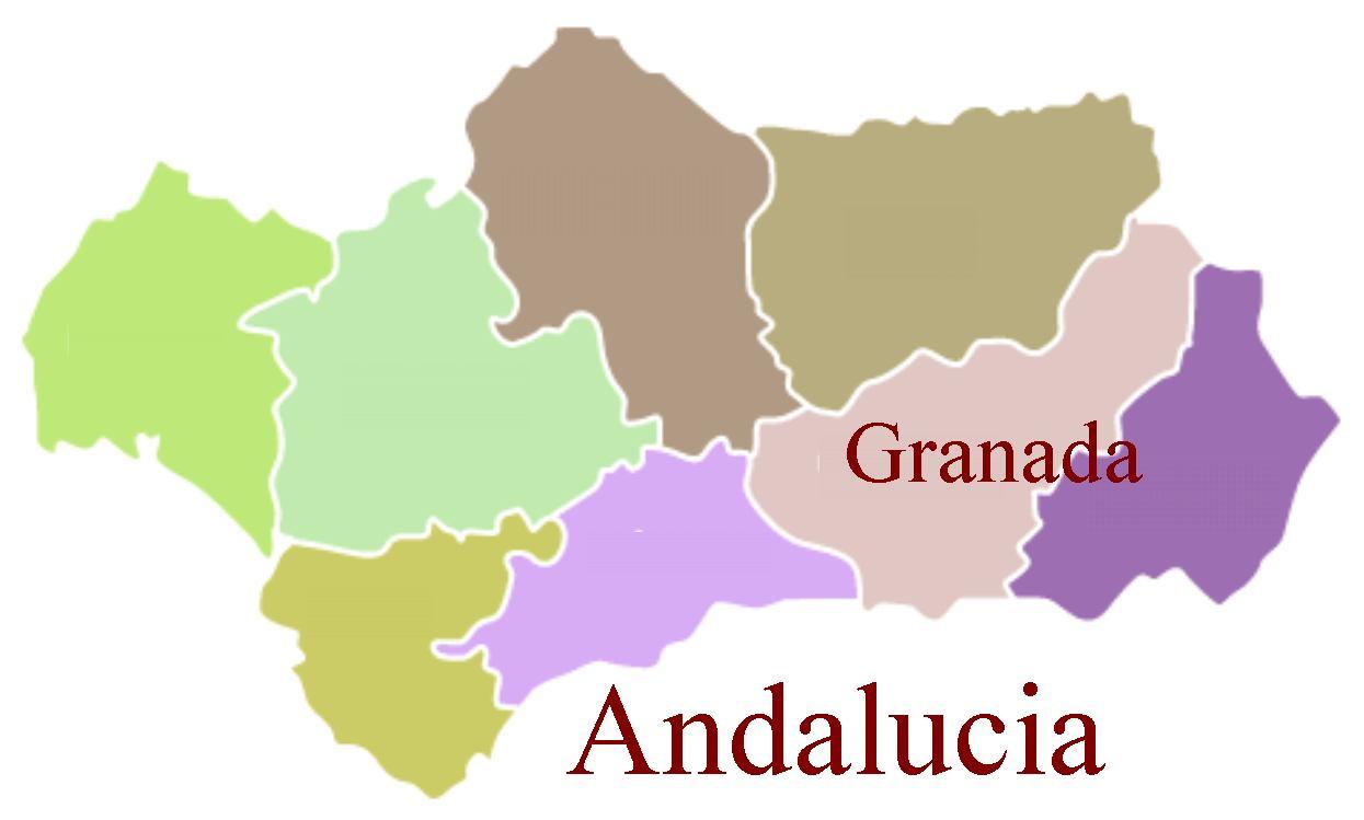 f50e732b3 Ciclos Fp de Imagen en Granada