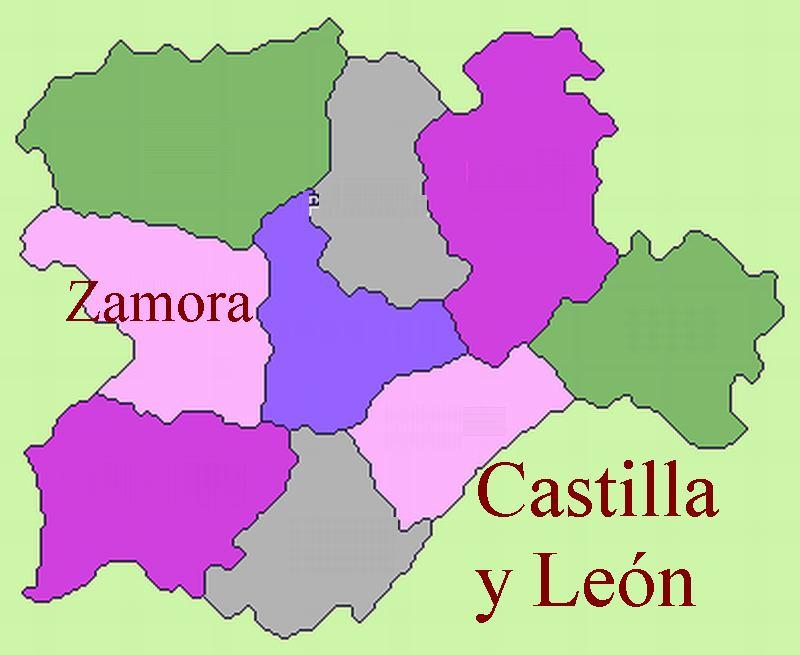 Ciclos Fp De Farmacia Y Parafarmacia En Zamora